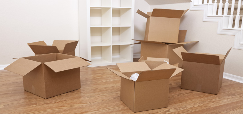 Fit-Outs-Move-Management