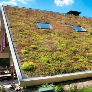 Green-Roofing-Systems-Intensive-Roof