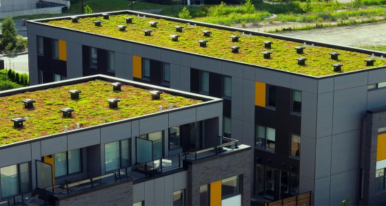 Green-Roofing-Systems-Urban-&-Rural