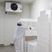 SureMountain-Agricultural-Insulation-cold-storage