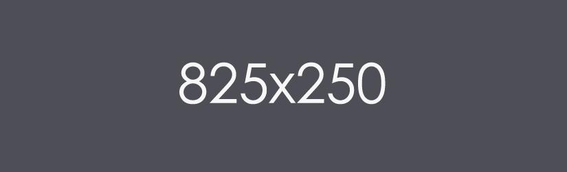 example-image-825x250
